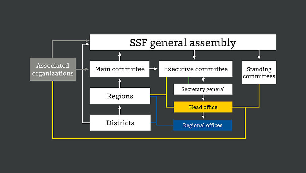 SSF's structure.